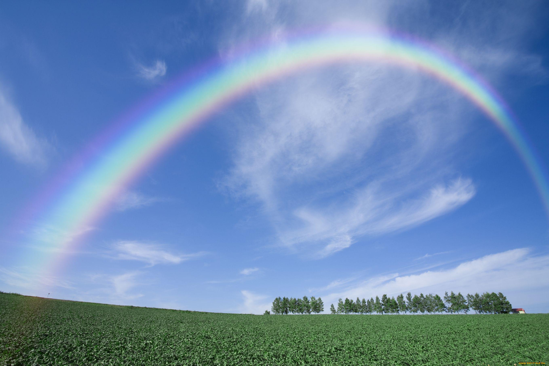 Картинки которые связаны с радугой